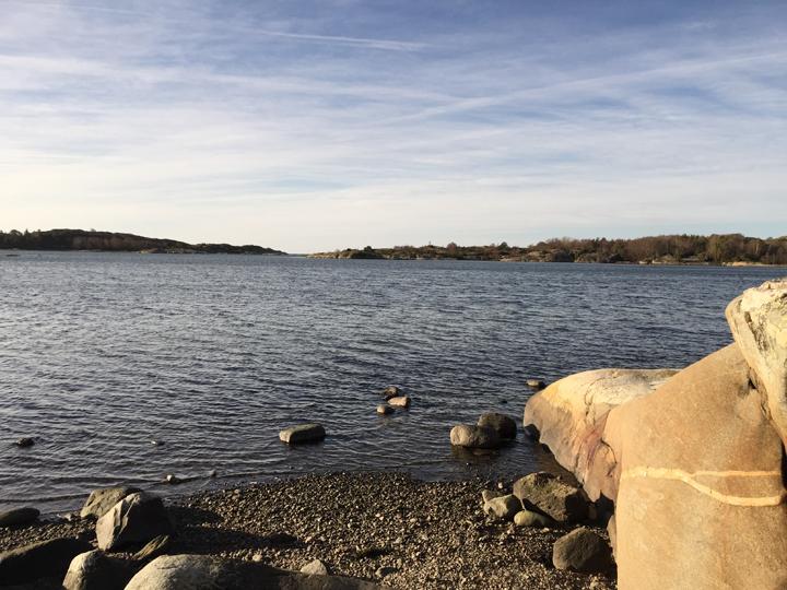 Kungsviken, söder om Stora Amundö, är en bra plats för att se fåglar på vintern.